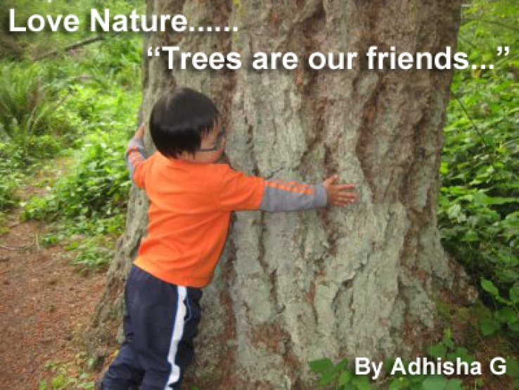 Essay on trees our best friend